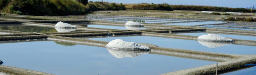 Récolte du sel dans les marais salants de Guérande